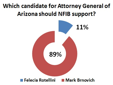 This poll of 379 Arizona small-business owners was conducted by NFIB between August 28 and September 4, 2014.